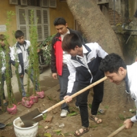 Học sinh toàn trường hưởng ứng tết trồng cây